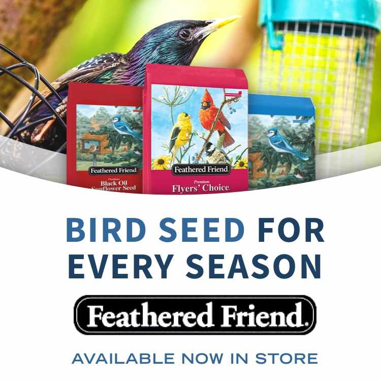 Featured Friends bird seed with words Bird seed for every season and bags of bird seed