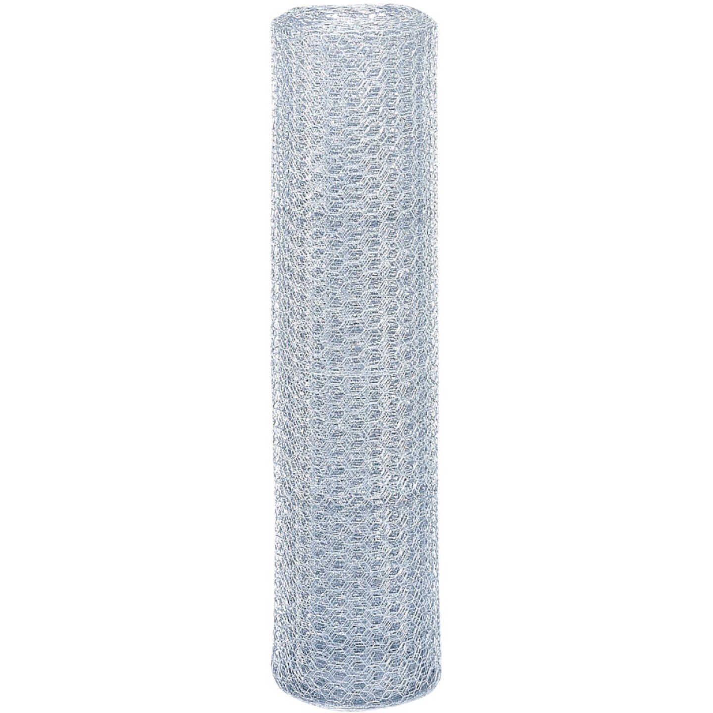 Do it 1 In. x 36 In. H. x 25 Ft. L. Hexagonal Wire Poultry Netting Image 2